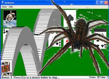 http://www.solitario.co.pt/spider/